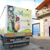 teloni_camion11
